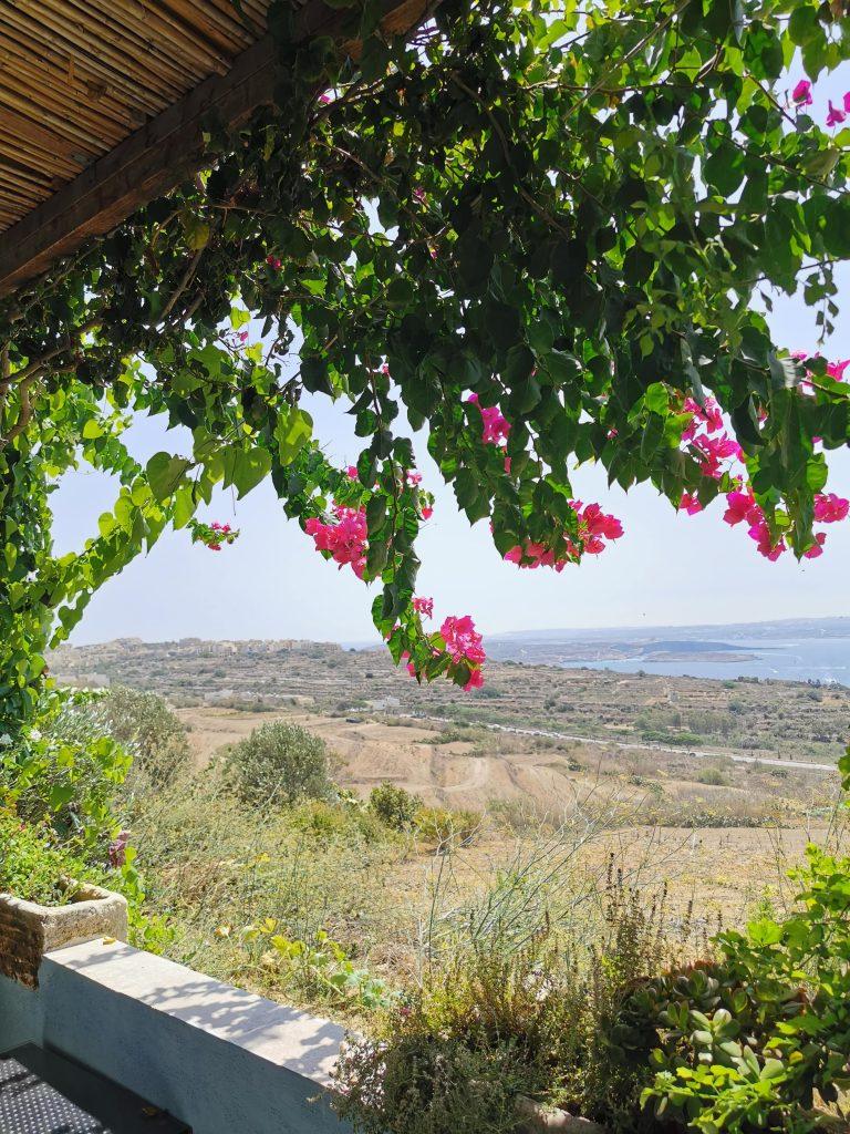Fliegu restaurant Gozo